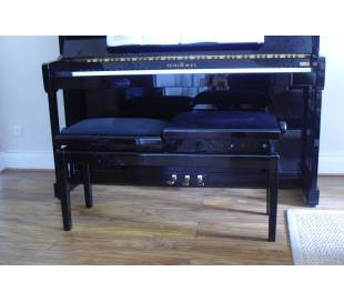 systeme controle humidite piano à queue dampp chaser piano life saver
